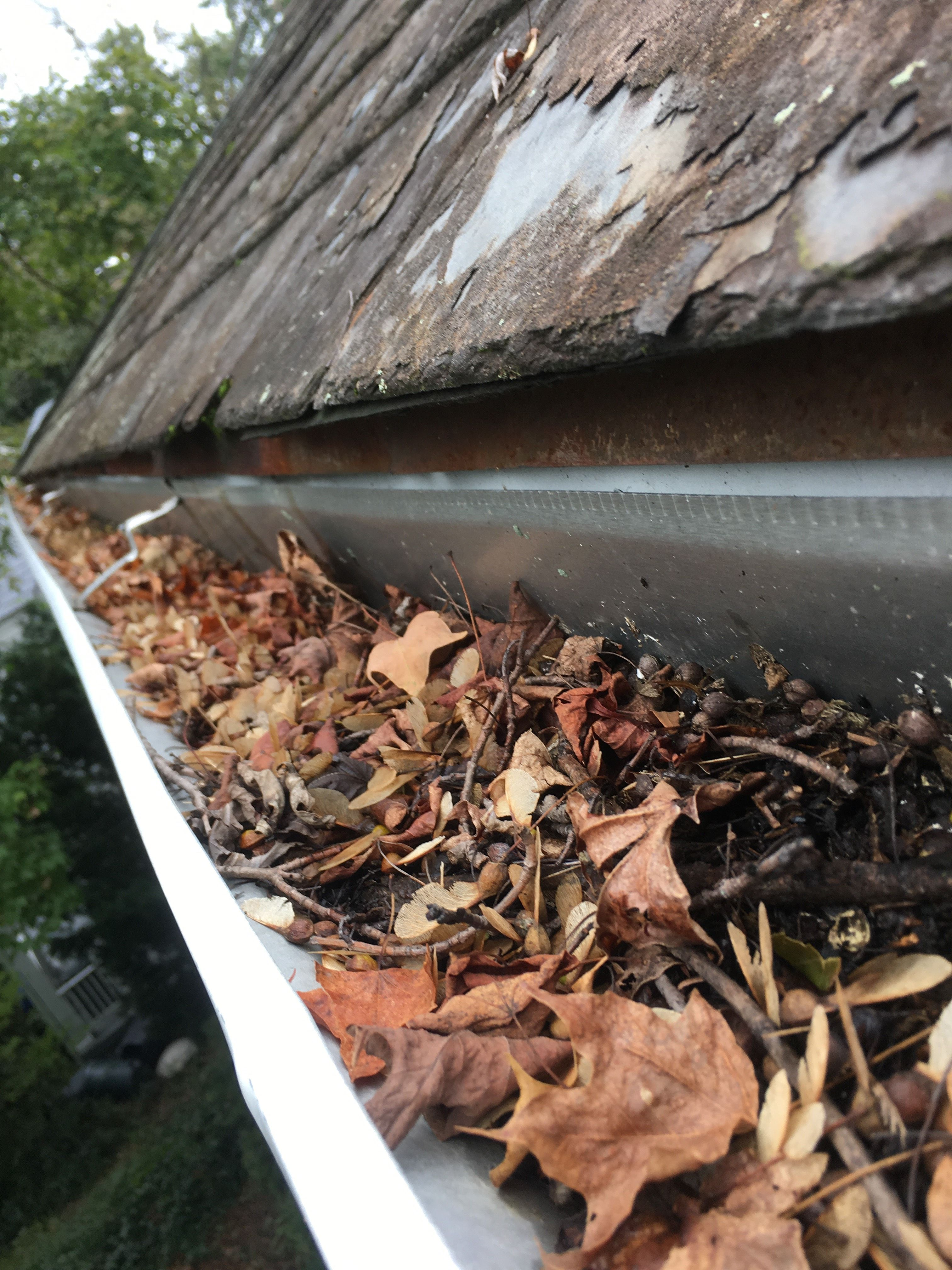 Can You Clean Your Gutters Yourself While This Is A Job That You May Be Able To Do Yourself Doing So Is Not A Good Idea For Cleaning Gutters Gutter Cleaning