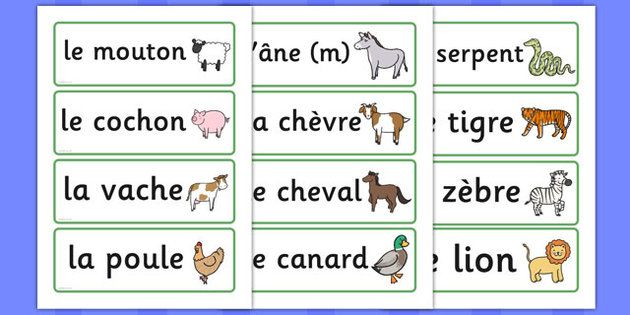 French Animal Word Cards France