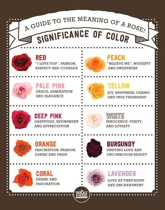 Rose Color Meanings On Pinterest Flower Meanings