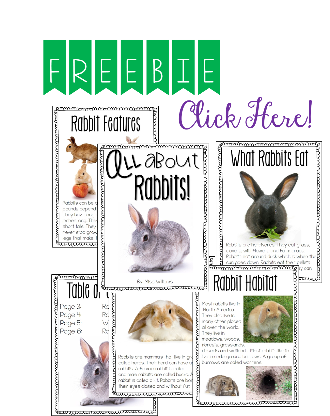 Free Rabbit Informational Text