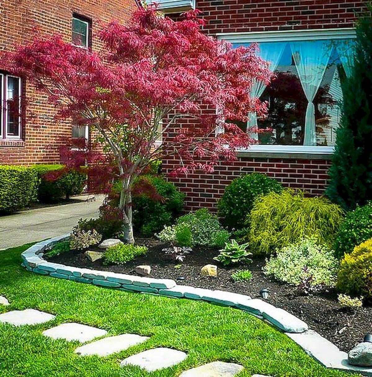 44 Fresh Small Garden Ideas For Backyard 23 Maple Tree