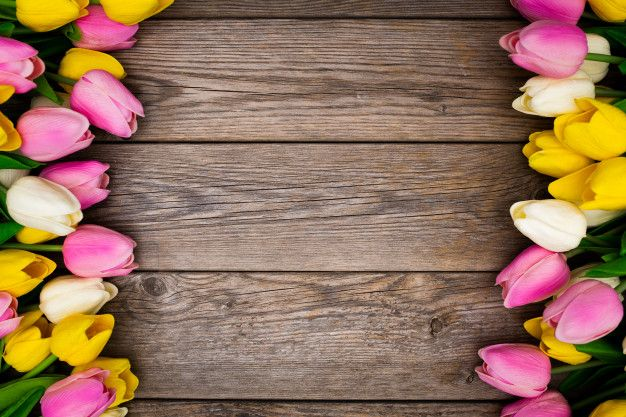 Hermosa composición hecha con tulipanes ... | Free Photo #Freepik #freephoto #flor #floral #flores #amor