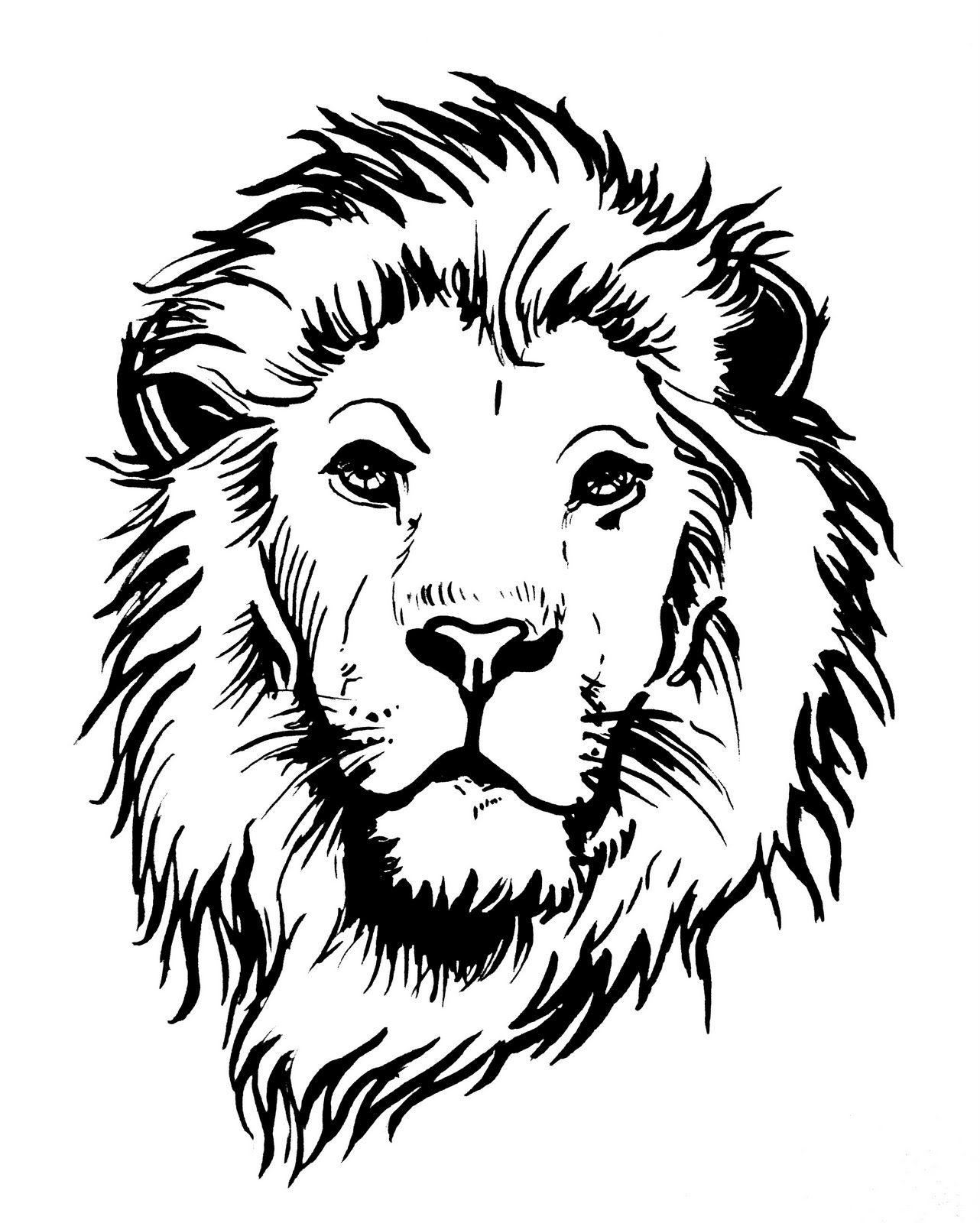 Lowenkopf Jpg 1282 1600 Tiger Art Drawing
