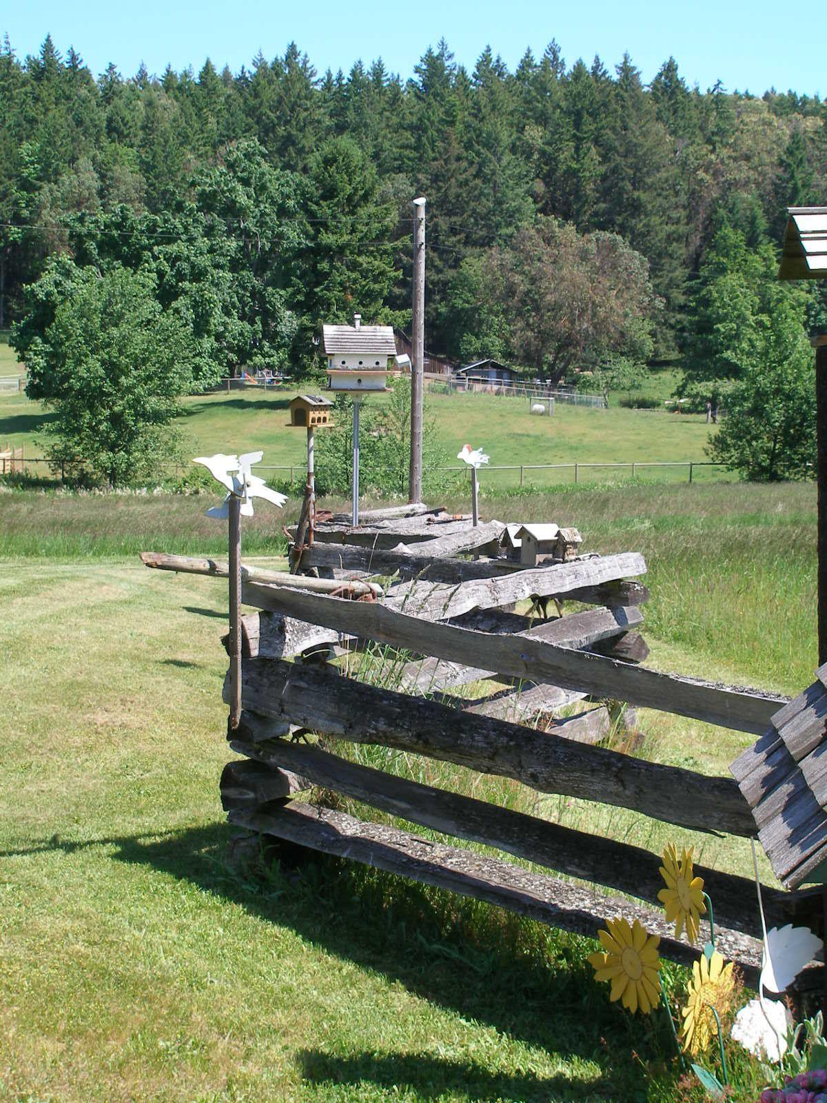 Snake Rail Farm Fence Farm Fence Fence Rail Fence
