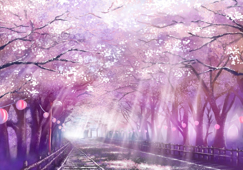 Sakura trees 風景の壁紙, 桜の壁紙, アニメーションアート