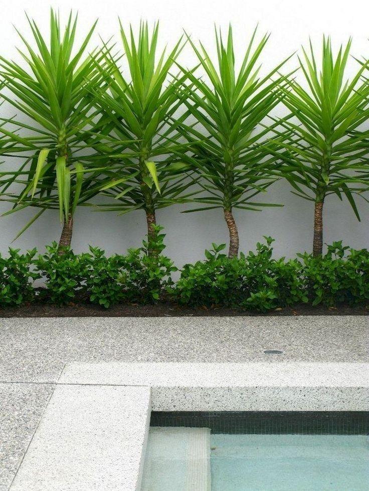 ✔ 42 Gartengestaltungsideen mit privatem Zaun 14 #backyard #tropicalbackyard #backyardlandscaping ~ aacmm.com