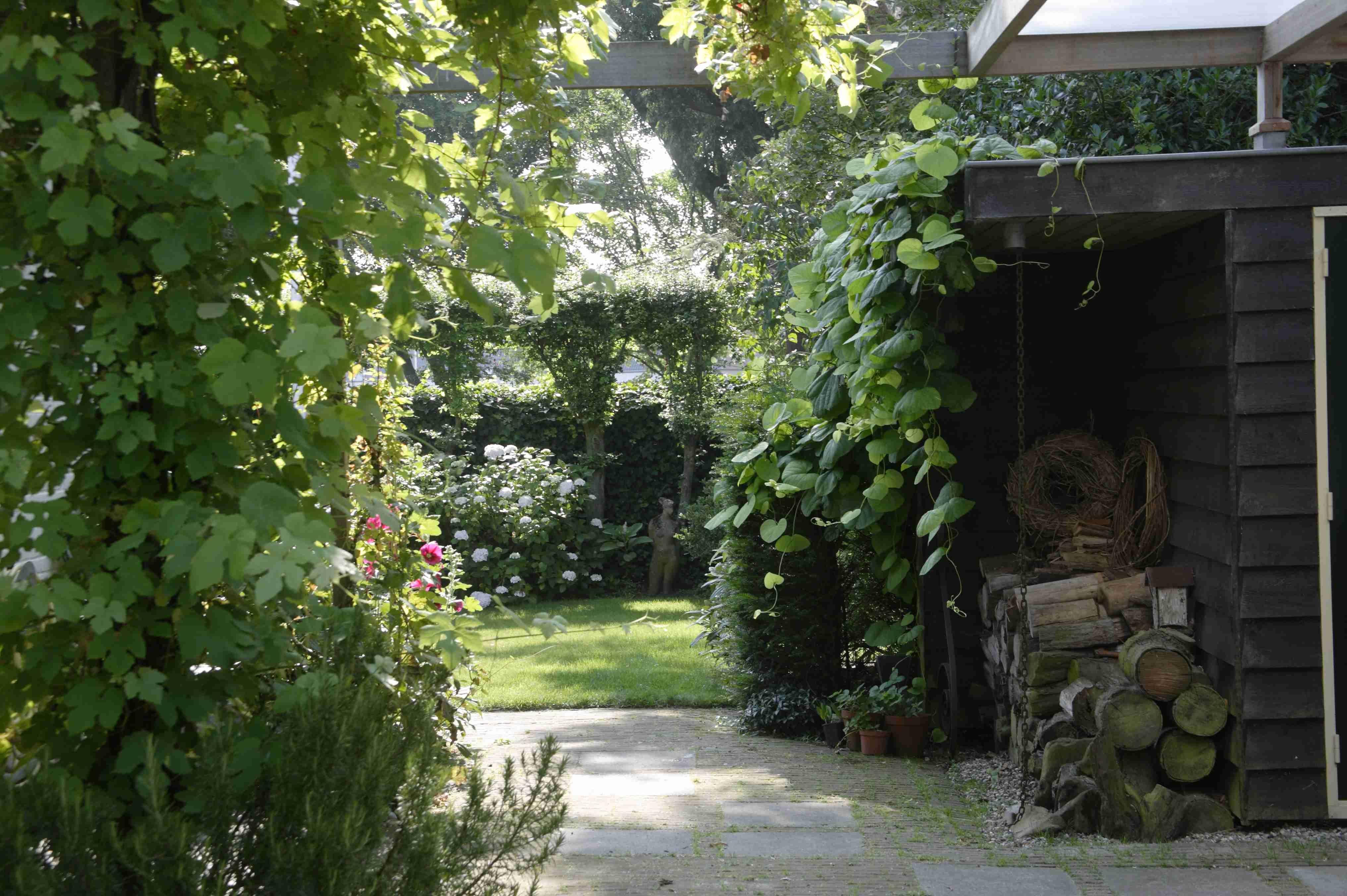 Tuin tuinontwerp tuinarchitect hovenier hoveniersbedrijf