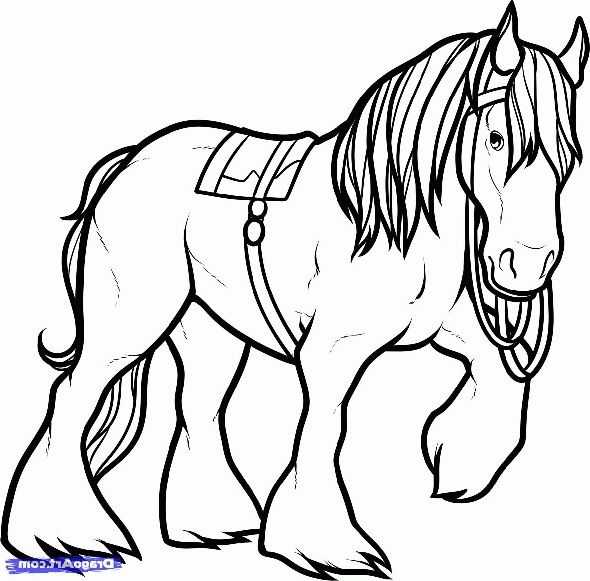 Shire Horse Coloring Pages Clydesdale Coloring Pages Gallery