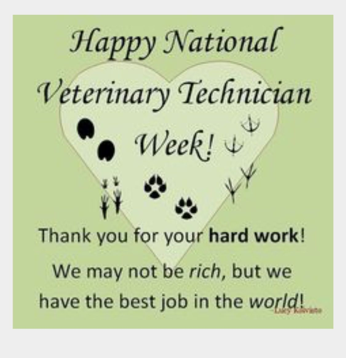 Pin by Lesa Fleming on Great quotes | Vet tech quotes, Vet ...