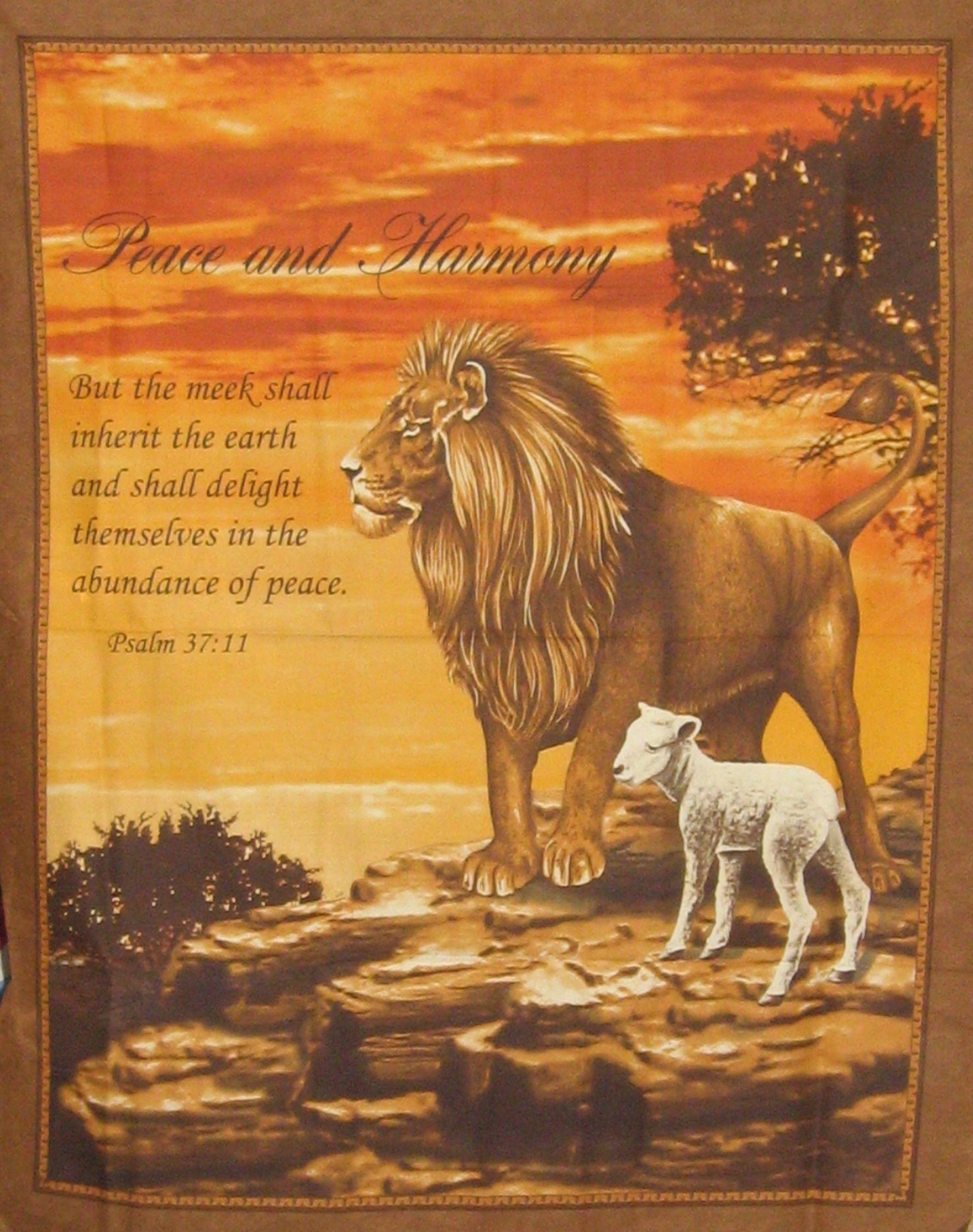 pics of lions and lambs | PEACE & HARMONY PSALM 37:11 LION & LAMB ...