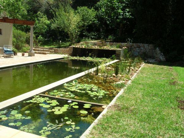 Der Selbstbau vom Schwimmteich mit natürlichem