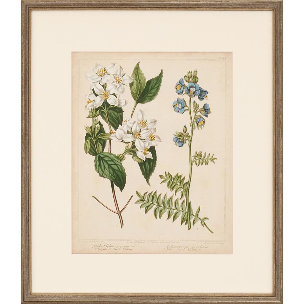 Paragon - Cottage Florals I | STR Guest Room | Pinterest