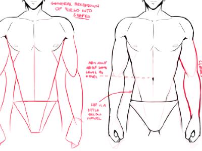 Male Anatomy Drawing Tutorial Szkic Owkiem Poradnik Pinterest