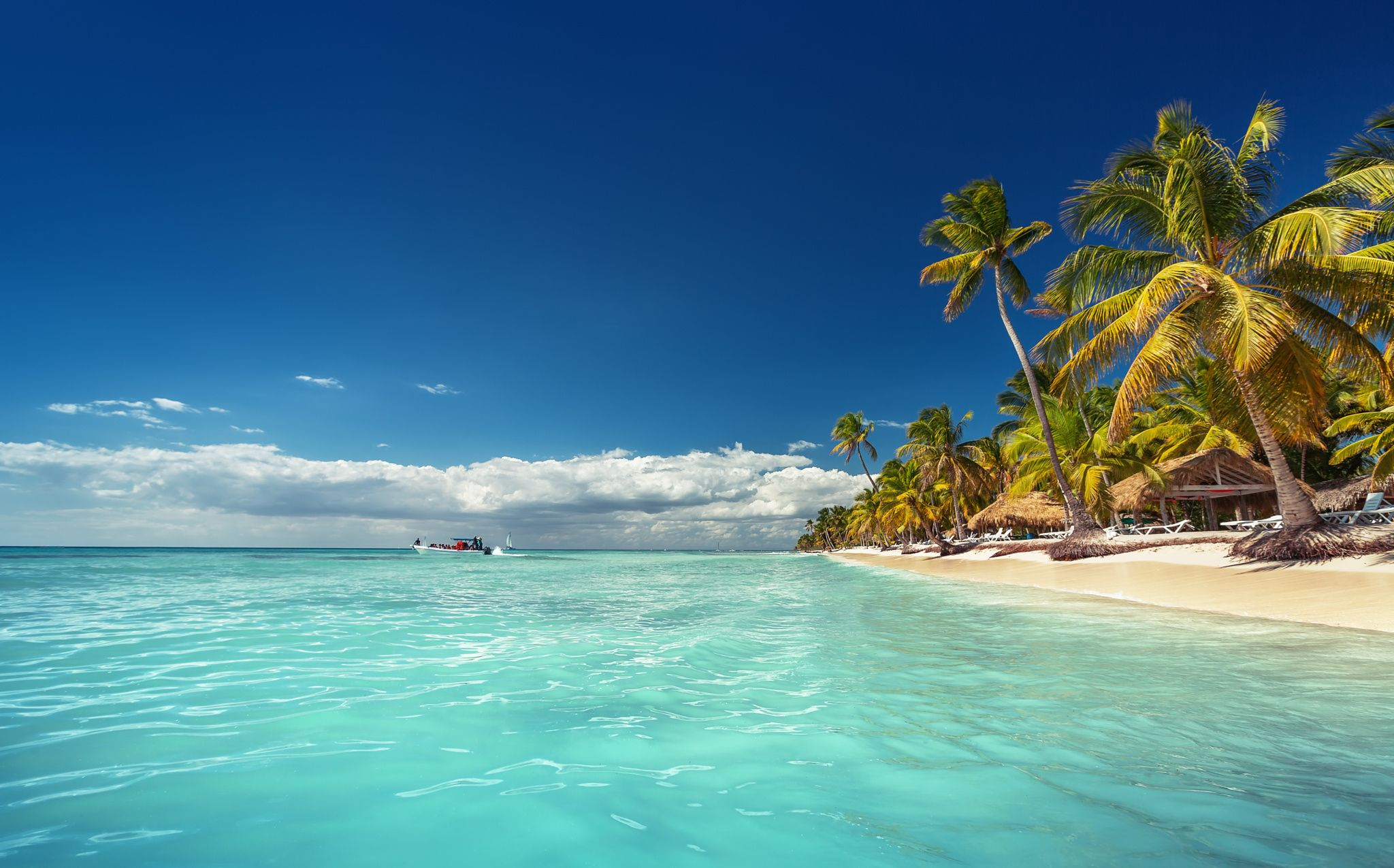 Landscape Of Paradise Tropical Island Beach Tropical Island Beach Carribean Travel Punta Cana Pictures
