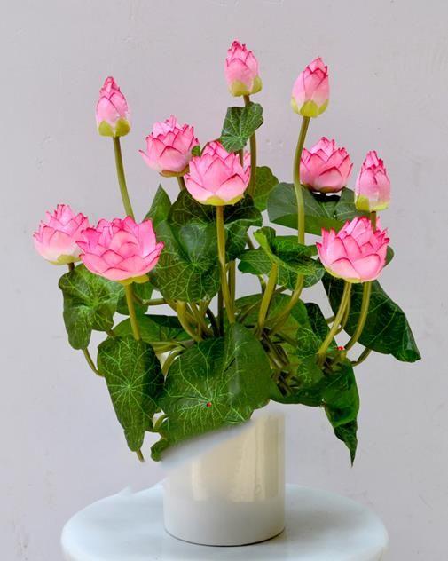 kytičky k narozeninám Pin by Libuše Jahodová on kytičky k narozeninám | Pinterest kytičky k narozeninám