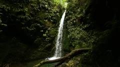 Waterfall Landscape Water Fall In Wide Stock Video Pond5 In 2021 Waterfall Landscape Waterfall Scenic Views