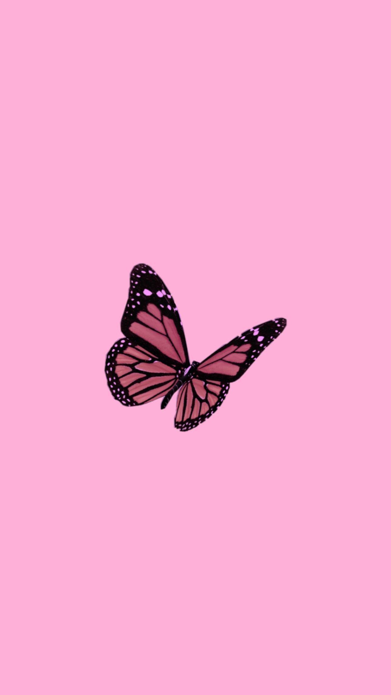 Butterfly wallpaper #lockscreenwallpaper