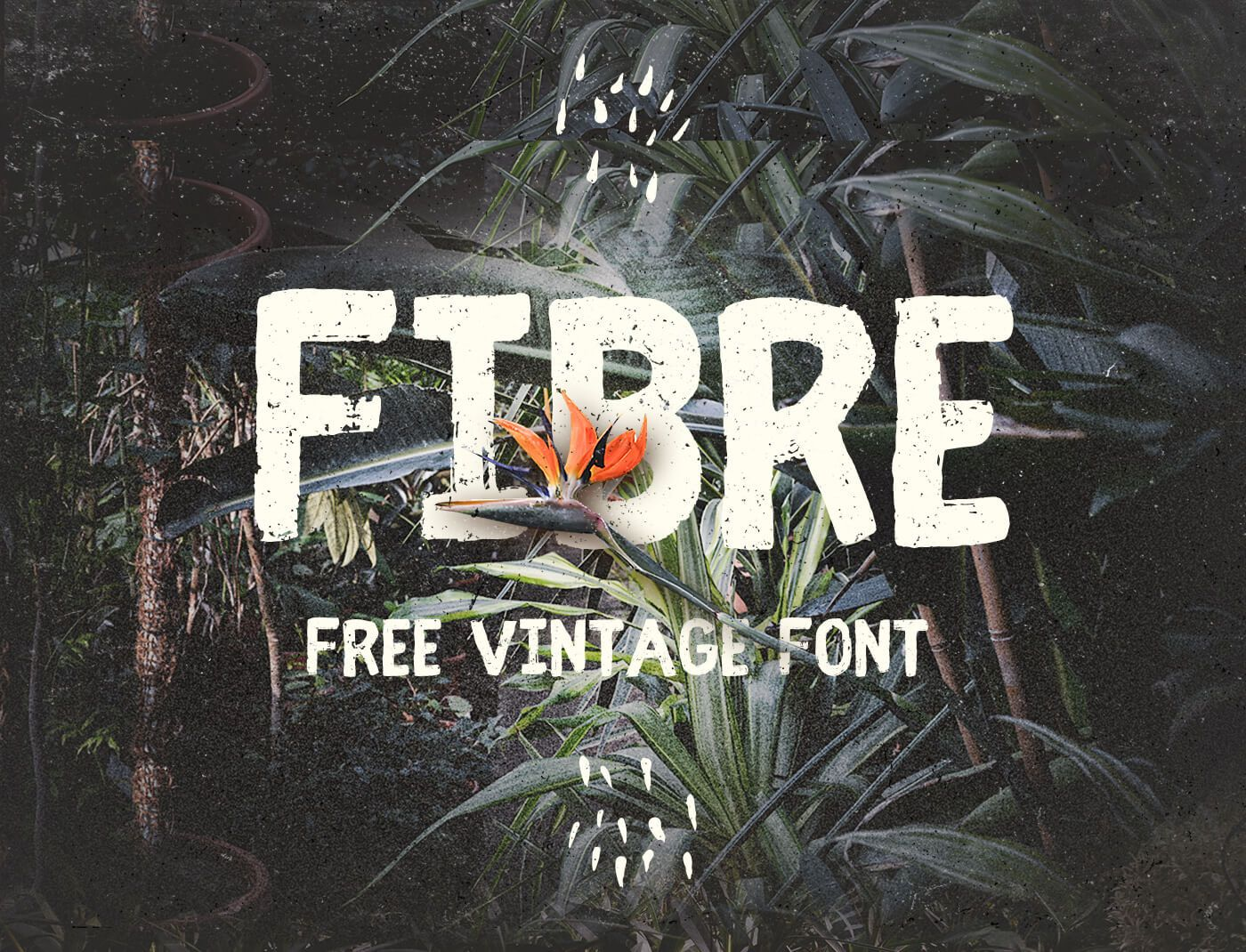 Fibre is a free handwritten vintage feel font all the basic