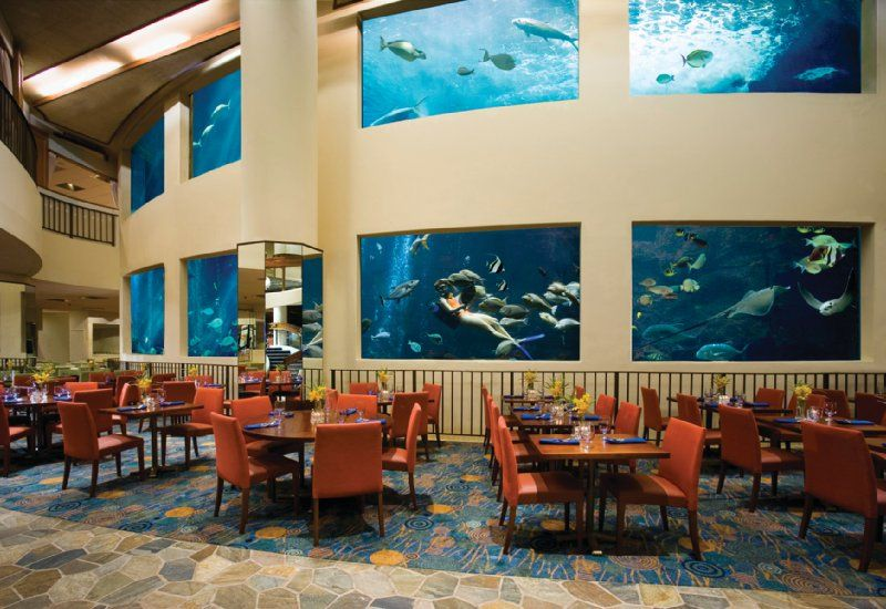 Oceanirium Restaurant In Hawaii Yes There Is A Real