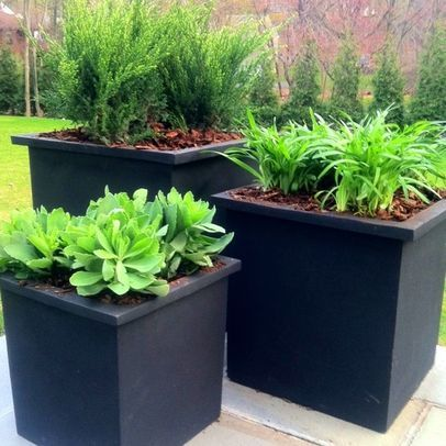 Contemporary Landscape Planter Boxes Design Ideas Pictures Remodel And Decor Minimalist Garden Container Plants Contemporary Landscape