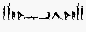 image result for sun salutations sequence silhouettes