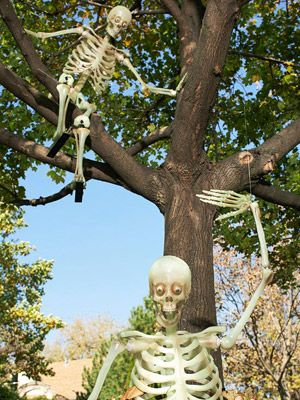Spooky Skeleton Decorations for a Halloween Yard That Wows Outdoor - halloween decorations skeletons