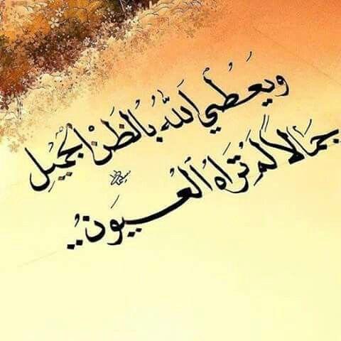 و ظني فيك يا سندي و يا حبيبي و يا طبيبي جميل فحقق لي يا إلهي حسن طني Quran Quotes Islamic Quotes Cool Words