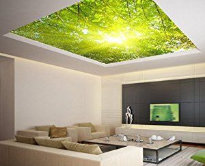 """Amazon.com: Ceiling LAMINATED STICKER MURAL leaves trees spring forest airly decole poster 93""""x93"""": Posters & Prints"""