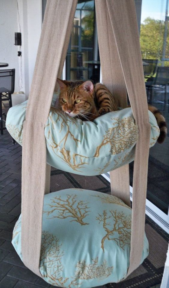 47 Brilliant Easy Homemade DIY Cat Toys for Your Furry Friend - animals #Animals #Brilliant #Cat #DIY #Easy #Friend #Furry #Homemade #Toys #CatPlayground #Cat #Playground