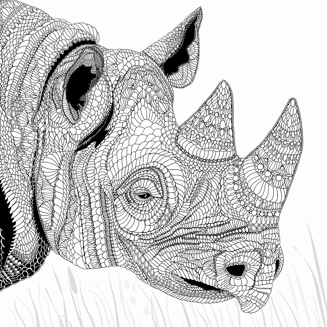 Detailed Coloring Pages Animals Awesome Renoster Colouring Pages Detailed Coloring Pages Animal Coloring Pages Coloring Pages