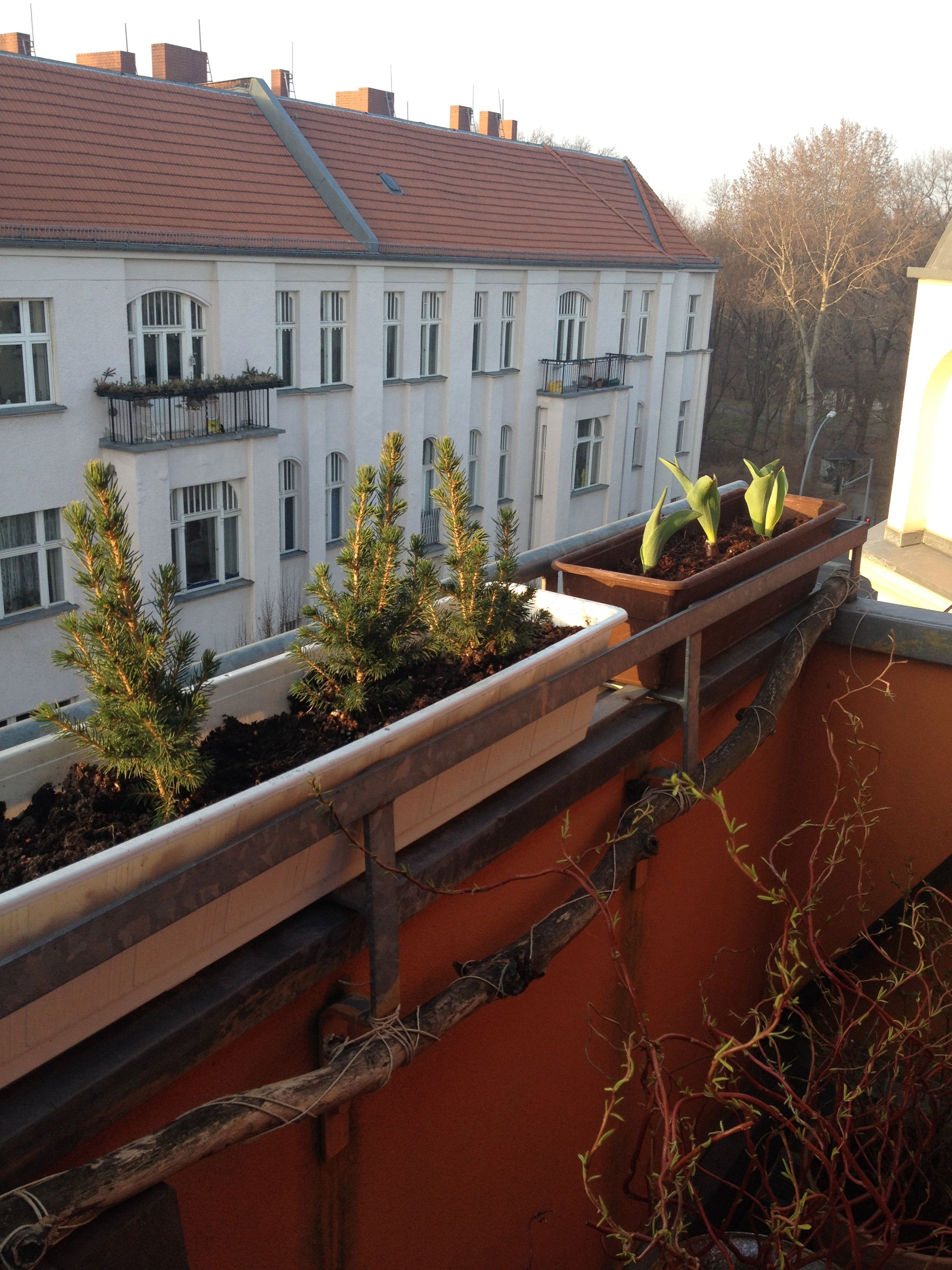 Freitag auf dem Balkon