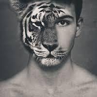 Resultado de imagen de cara persona tigre  Hdraw  Pinterest
