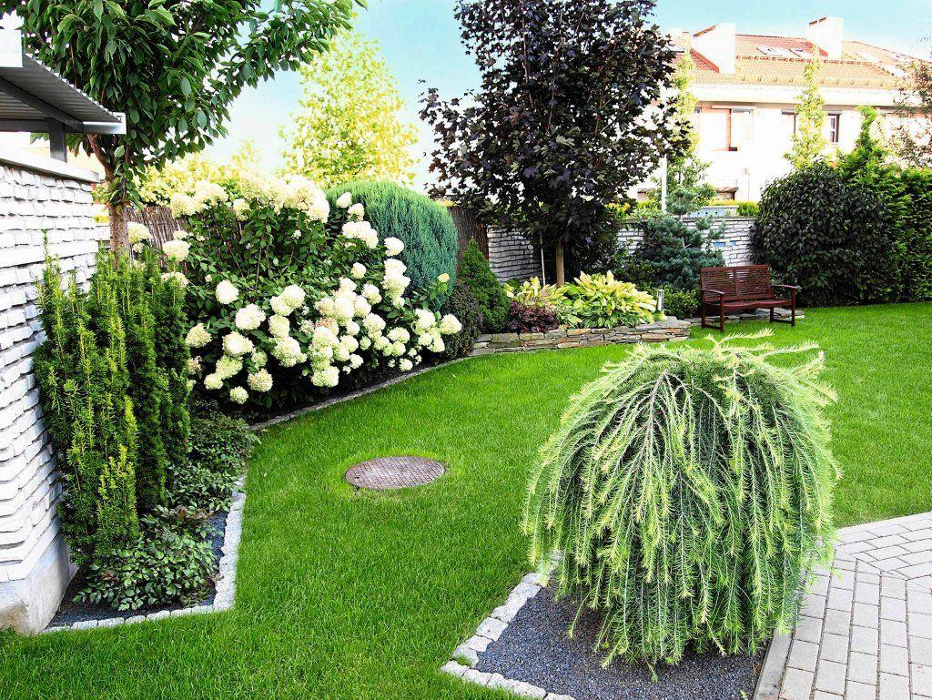 Poznym Latem Ogrod Zdobia Hortensje Bukietowe Ich Biel Optycznie Powieksza Przestrz Beautiful Flowers Garden Backyard Landscaping Backyard Landscaping Designs