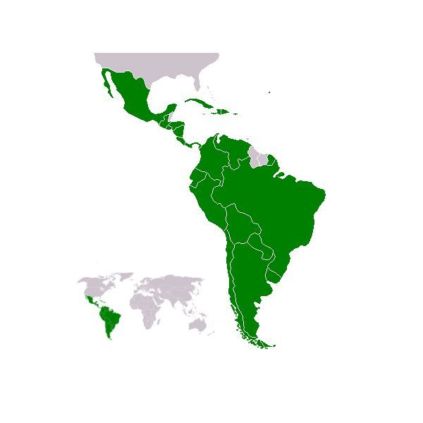 Teaching students about Latin America, the people and places, opens - fresh world map quiz practice