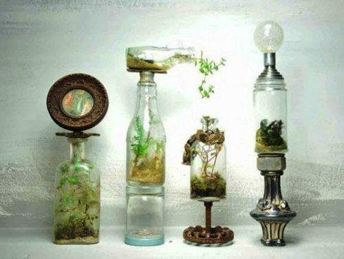 20 Ideas for Home Decorating with Glass Plant Terrariums, Unique Eco