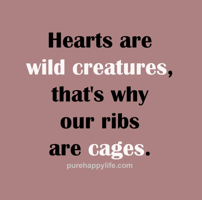 quotes hearts are wild creatures more on purehappylife com