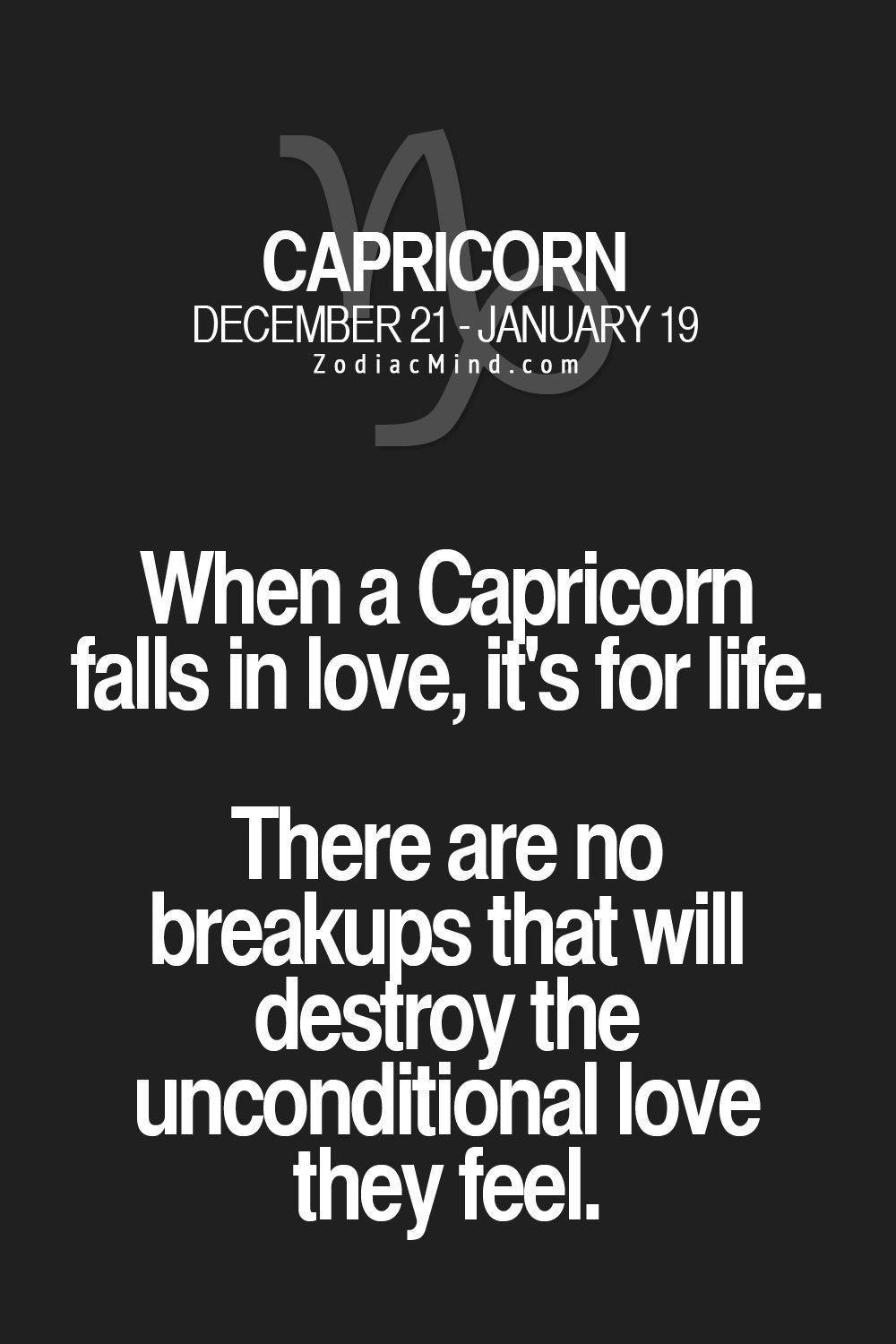 When a capricorn loves you