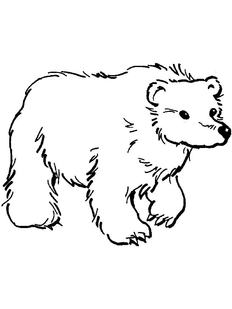 Bear Coloring Pages For Preschoolers The Following Is Our Bear Coloring Page Collection You Are Free Bear Coloring Pages Animal Coloring Pages Coloring Pages