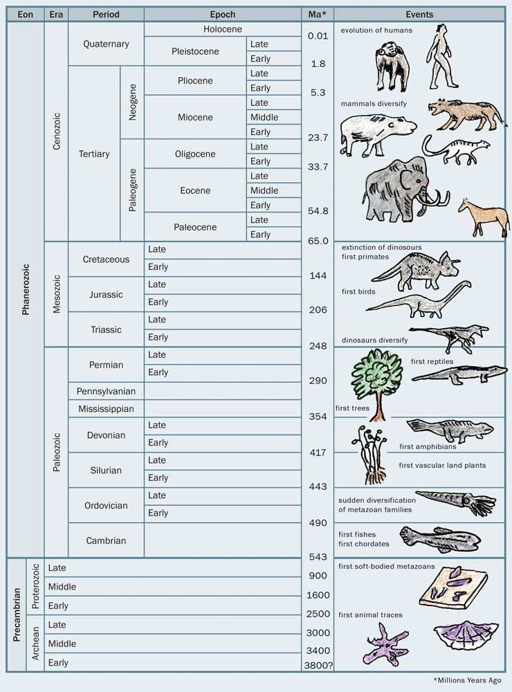 1968 Timeline | Geologic time scale | 40.s board | Pinterest ...