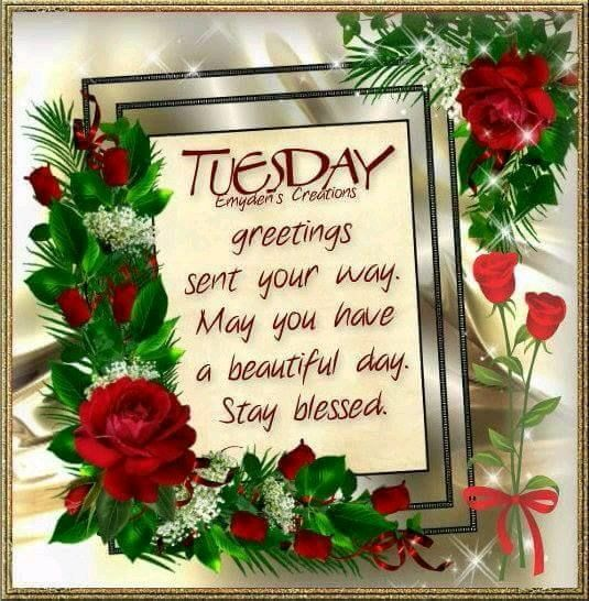 Have A Happy Tuesday Every Body. Take Care ! Xxx