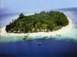 Diving in Sipadan Island!
