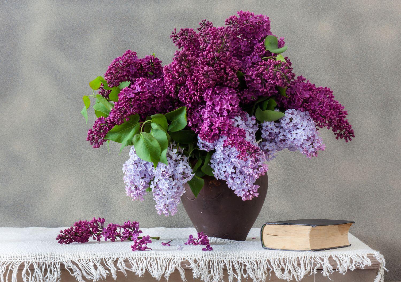 Nostalgia A Bouquet Of Lilac In A Clay Vase And A Book By Vladislav Kucheruk On 500px S Izobrazheniyami Siren Cvety