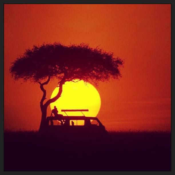 Anyone else wish their weekend was shaping up like this? Beautiful #Sunset over the #MaasiMara in Kenya