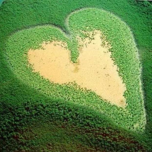 صور جزر على شكل قلب حب Corazones