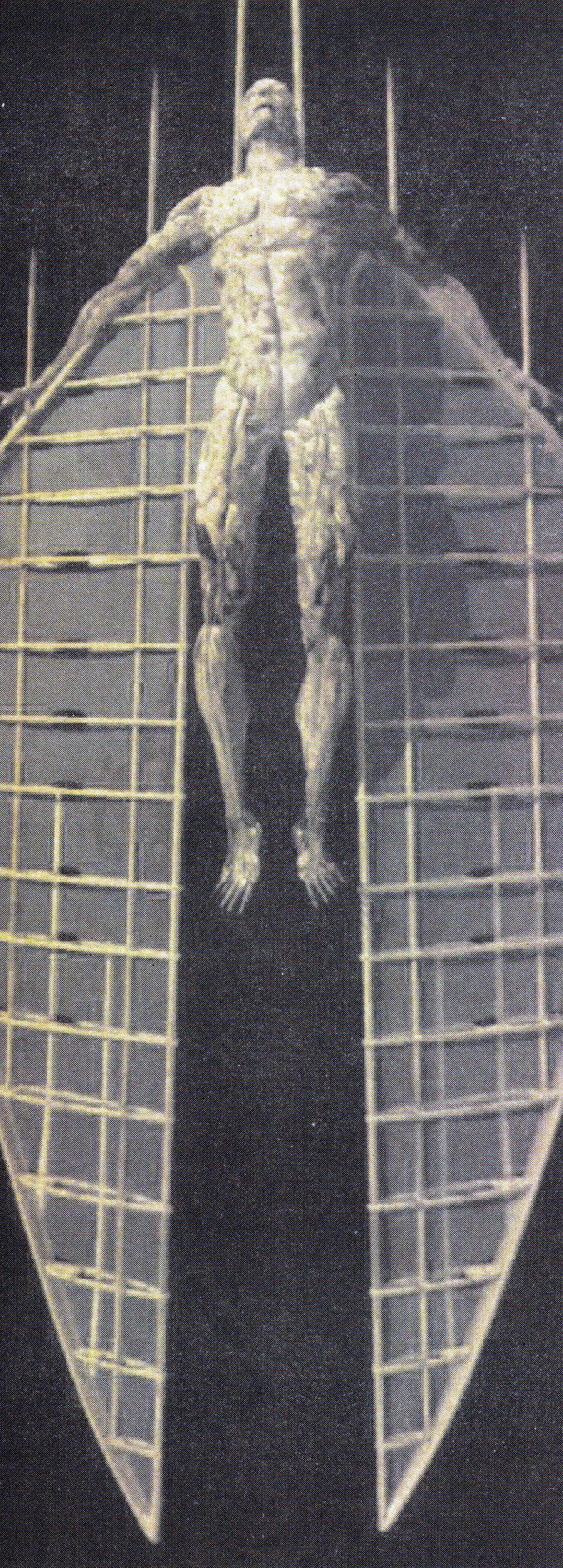 El Hombre Polilla Se Aproxima Por El Otoño para hincharse de membrillos y cermeñas. Su mensaje: Hay que dejarse abducir.