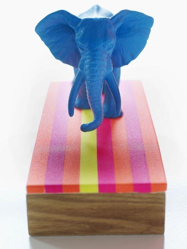 Decoração de Elefante