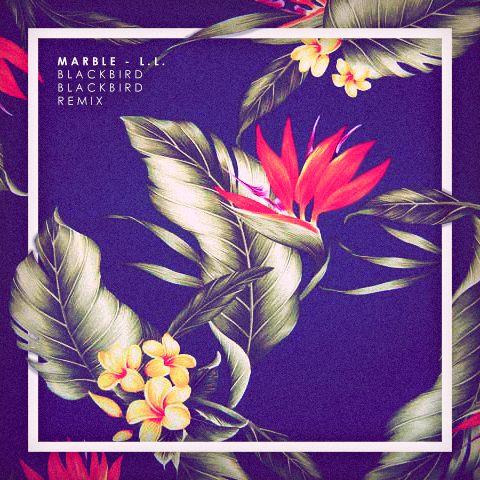 Beautiful floral pattern against off-black background. http://samueljohnsondesign.tumblr.com/
