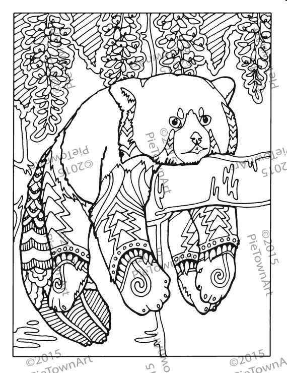 Red panda coloring page 2
