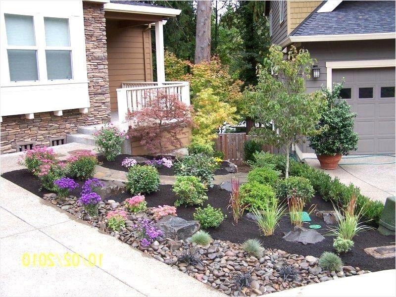 Landscape Design Front Yard No Grass 49 Backyard