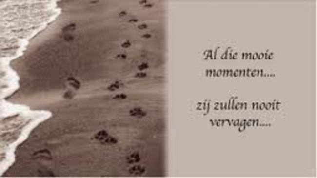 Afbeeldingsresultaat Voor Sterkte Gedichten Overlijden Hond